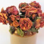 ドライフラワーの作り方で簡単なのは?長持ちさせる方法や向いている花は?