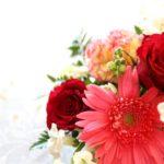 母の日の花の種類で人気なのは?花言葉で選んでプレゼントするのもいいかも